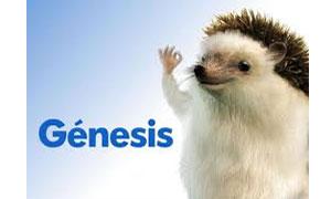 genesis.es